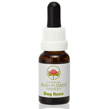 Dog Rose Essence