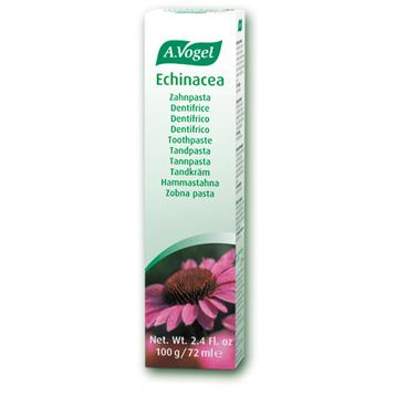 Echinacea Toothpaste